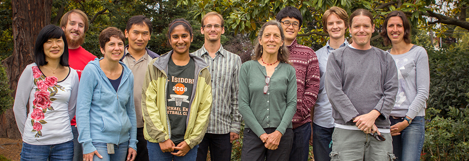 The 2013 Hake Lab Cohort