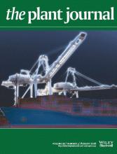image of plant journal cover, showing gantry cranes